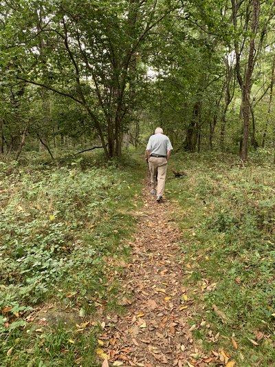 A walk on the serene Appalachian Trail